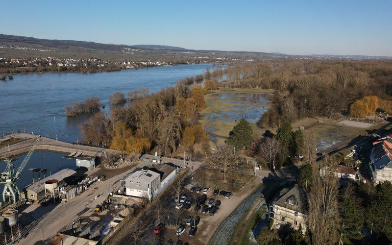In der Rheingewann Ingelheim am Rhein